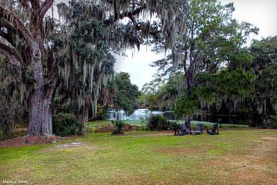 Spanish Moss Draped Oaks Of Charleston Poster