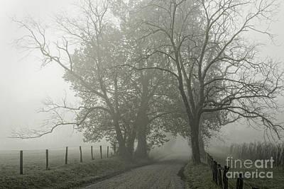 Sparks Lane Fog Poster
