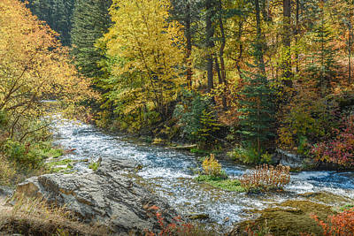 Spearfish Creek Autumn Poster