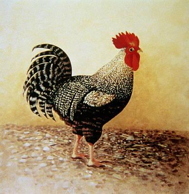 Speckled Rooster  Poster