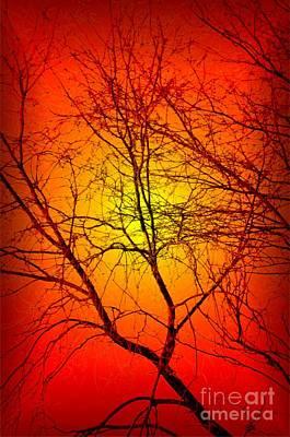 Spectral Sunrise Poster by Tlynn Brentnall
