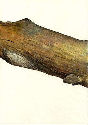 Sperm Whale Second Part Poster by Juan  Bosco