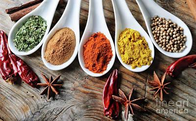 Spices Poster by Jelena Jovanovic