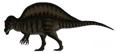 Spinosaurus, A Large Carnivore Poster by Vitor Silva