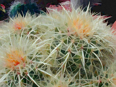 Spiny Barrel Cactus Poster by Elaine Plesser