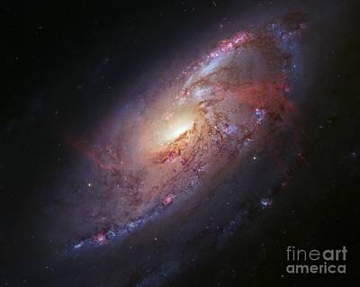 Spiral Galaxy M106, Hubble Image Poster by Robert Gendler