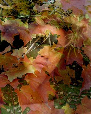 Poster featuring the photograph Spirit Of Autumn  by Jodie Marie Anne Richardson Traugott          aka jm-ART