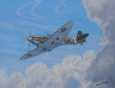 Spitfire Poster by Elaine Jones