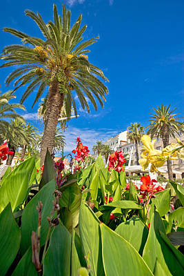Split Riva Palms And Flowers Poster by Brch Photography
