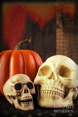 Spooky Halloween Skulls Poster by Edward Fielding