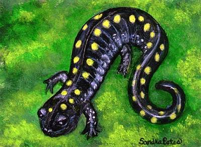 Poster featuring the painting Spotted Salamander by Sandra Estes