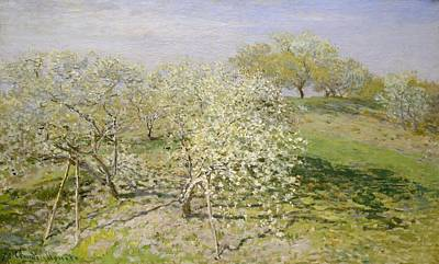 Spring - Fruit Trees In Bloom Poster by Claude Monet