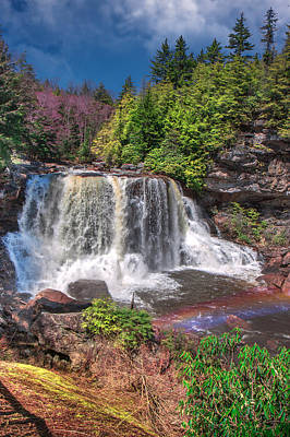 Spring At Blackwater Falls Poster