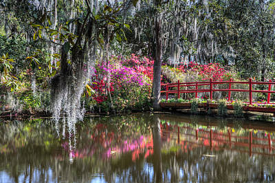 Spring At Magnolia Plantation 1 Poster