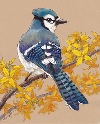 Spring Blue Jay 3 Poster