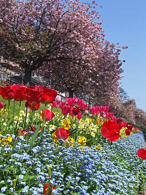 Spring Flowers - Edinburgh Poster