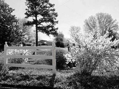 Spring In Martinsville Bw Poster by Angelia Hodges Clay