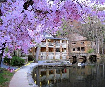 Spring In Montreat Poster by Denise Nelson