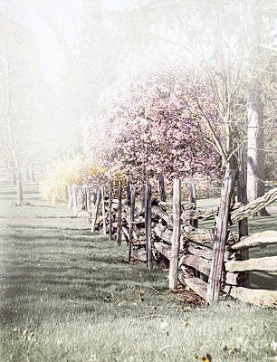 Spring Landscape With Fence Poster