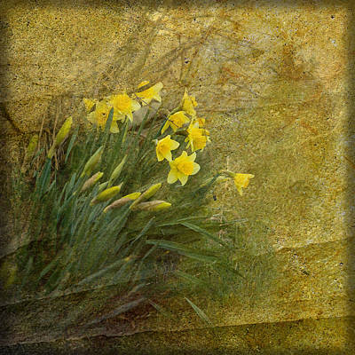 Spring Poster by Liz  Alderdice