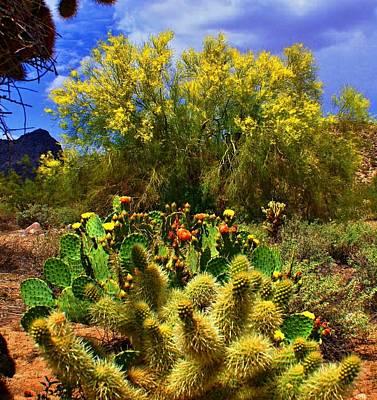 Spring On The Desert Poster