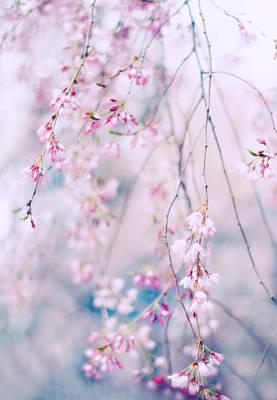 Spring Pastels Poster by Jessica Jenney