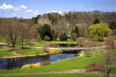 Spring Pond Landscape Poster