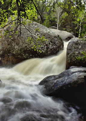 Poster featuring the photograph Spring Runoff by Ellen Heaverlo