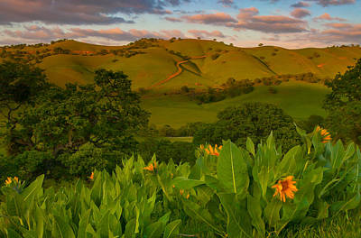 Spring Scene At Round Valley Poster by Marc Crumpler