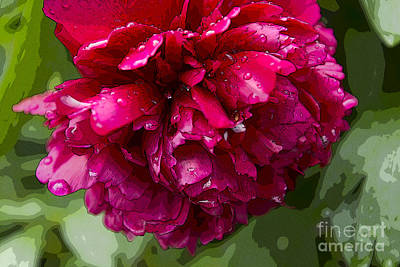 Spring Shower Peony 2 Poster by Jeanette French