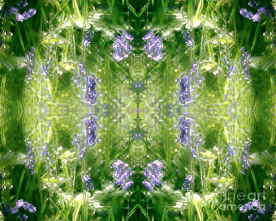 Spring Symmetry Poster