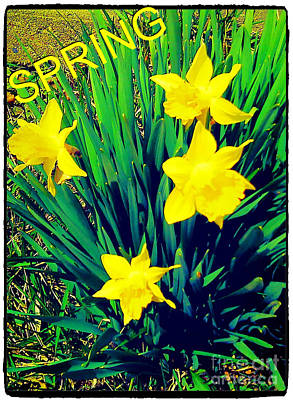 Spring Poster by Thommy McCorkle