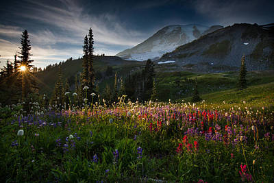 Spring Time At Mt. Rainier Washington Poster by Larry Marshall