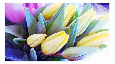 Spring Tulips Poster by Michelle Frizzell-Thompson