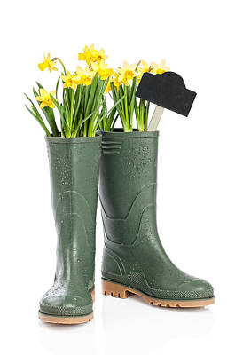Spring Wellies Poster by Amanda Elwell