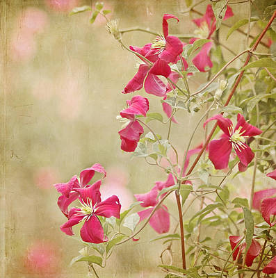 Spring Whisper Poster by Kim Hojnacki
