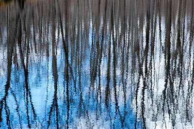 Springtime Beaver Pond Reflections 1 In Gatineau Park Quebec. Poster by Rob Huntley