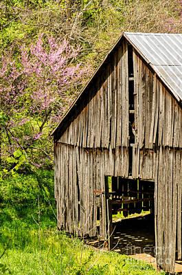 Springtime In Kentucky Poster