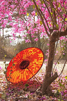 Springtime Umbrella Poster by Dennis Cox WorldViews