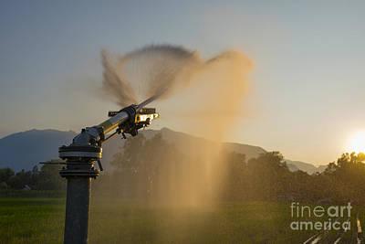 Sprinkler Irrigation Poster