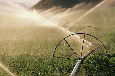 Sprinkler System With Wheels Watering Poster by Panoramic Images