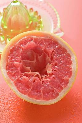 Squeezed Pink Grapefruit In Front Of Citrus Squeezer Poster