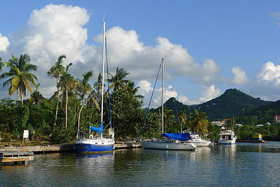 St. Lucia - Cruise - Boats At Dock Poster by Nora Boghossian