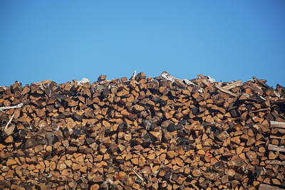 Stack Of Firewood Pile Against Blue Sky Poster