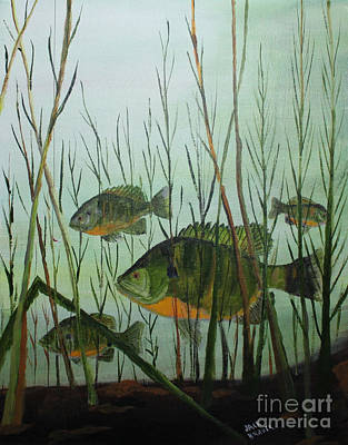 Stacked Blue Gills Poster