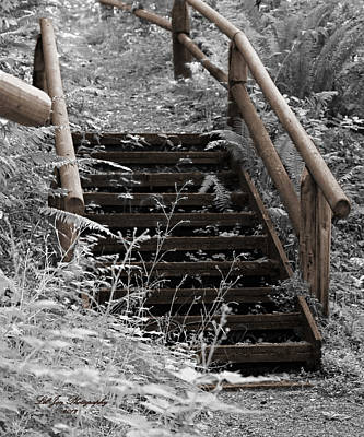 Stairway Home Poster by Jeanette C Landstrom
