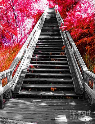Stairway To Nature Poster by John Kreiter