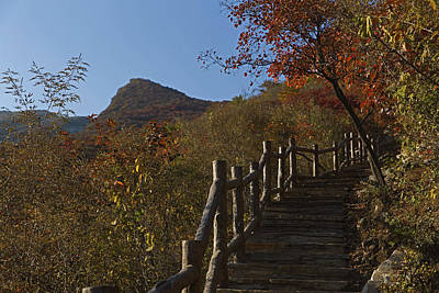 Stairway To The Top Poster by Qing