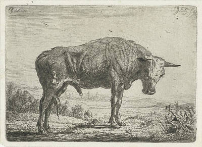 Standing Bull, Jacobus Cornelis Gaal Poster by Jacobus Cornelis Gaal