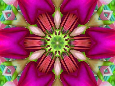 Star Fuchsia 3 Mandala Poster
